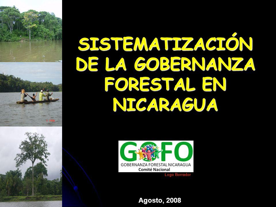 EL PROCESO DE LA GOBERNANZA Principales Logros Talleres territoriales de Gobernanza y Taller Nacional en Estelí FAO, CCAD y EFCA expresaron el interés en el proceso recién iniciado de creación de mesas de concertación para el desarrollo forestal en Nicaragua.