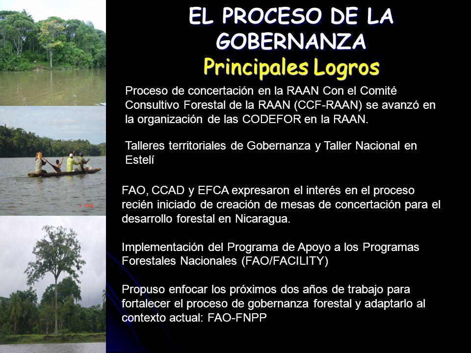 EL PROCESO DE LA GOBERNANZA Principales Logros Creación de una página Web www.inafor.gob.ni/gofowww.inafor.gob.ni/gofo Creación de 10 Gofos Territoriales, los que contaron con una participación total de mas de Tres mil actores claves del sector forestal Actualización y ajuste de la Política de Desarrollo Forestal de Nicaragua Se fortaleció la participación de los actores involucrando al 67% de participación ciudadana, 33% miembros de Instituciones del estado; 21% de mujeres.