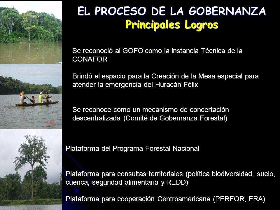 EL PROGRAMA FORESTAL NACIONAL Y LA GOBERNANZA GOBERNANZAFORESTALGOBERNANZAFORESTAL La Gobernanza Forestal en Nicaragua es la plataforma en la cual descansa el Programa Forestal Nacional para su operativización