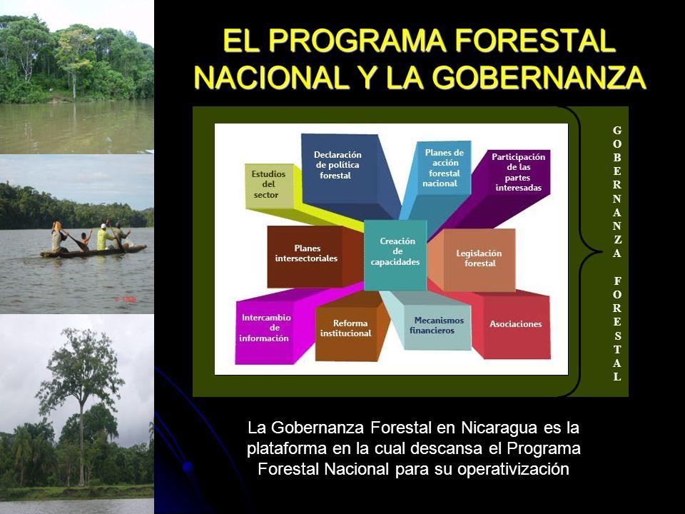 EL PROGRAMA FORESTAL NACIONAL Y LA GOBERNANZA Los principios en los que descansa la Gobernanza Forestal están íntimamente relacionados a los principios en los cuales se desarrolla el Plan Forestal Nacional