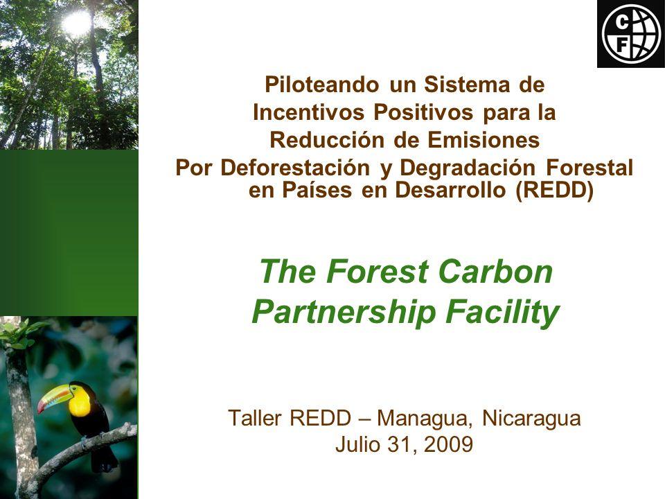 Piloteando un Sistema de Incentivos Positivos para la Reducción de Emisiones Por Deforestación y Degradación Forestal en Países en Desarrollo (REDD) The Forest Carbon Partnership Facility Taller REDD – Managua, Nicaragua Julio 31, 2009