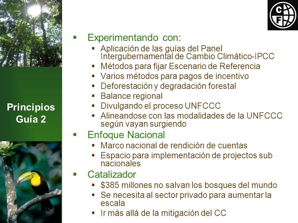 Principios Guía 2 Experimentando con: Aplicación de las guías del Panel Intergubernamental de Cambio Climático-IPCC Métodos para fijar Escenario de Referencia Varios métodos para pagos de incentivo Deforestación y degradación forestal Balance regional Divulgando el proceso UNFCCC Alineandose con las modalidades de la UNFCCC según vayan surgiendo Enfoque Nacional Marco nacional de rendición de cuentas Espacio para implementación de projectos sub nacionales Catalizador $385 millones no salvan los bosques del mundo Se necesita al sector privado para aumentar la escala Ir más allá de la mitigación del CC