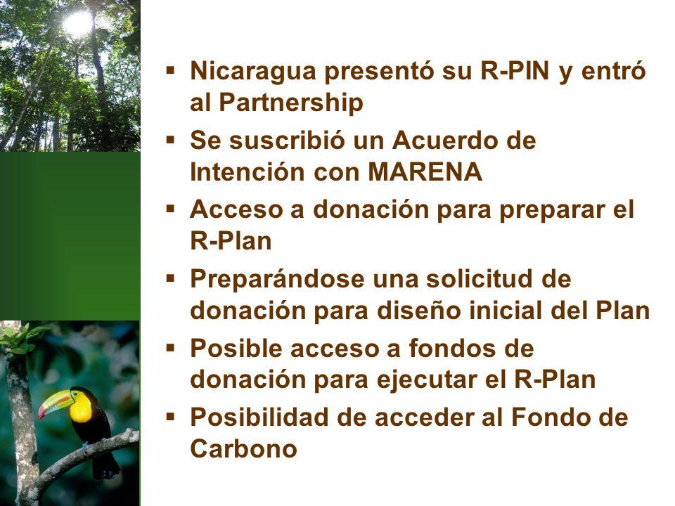 Nicaragua presentó su R-PIN y entró al Partnership Se suscribió un Acuerdo de Intención con MARENA Acceso a donación para preparar el R-Plan Preparándose una solicitud de donación para diseño inicial del Plan Posible acceso a fondos de donación para ejecutar el R-Plan Posibilidad de acceder al Fondo de Carbono