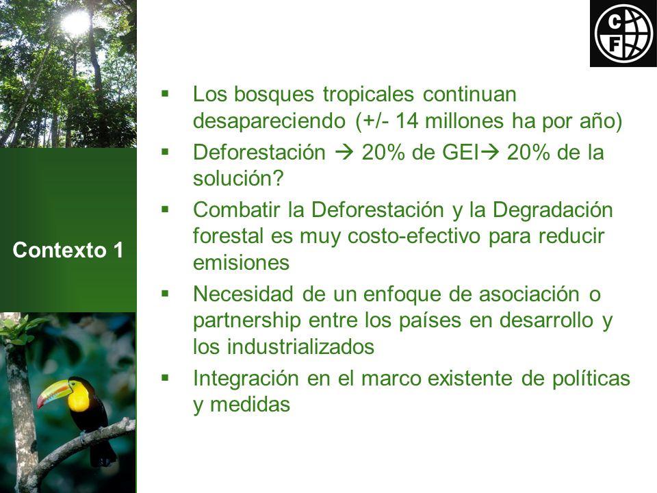Contexto 1 Los bosques tropicales continuan desapareciendo (+/- 14 millones ha por año) Deforestación 20% de GEI 20% de la solución.