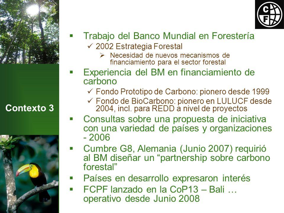 Contexto 3 Trabajo del Banco Mundial en Forestería 2002 Estrategia Forestal Necesidad de nuevos mecanismos de financiamiento para el sector forestal Experiencia del BM en financiamiento de carbono Fondo Prototipo de Carbono: pionero desde 1999 Fondo de BioCarbono: pionero en LULUCF desde 2004, incl.