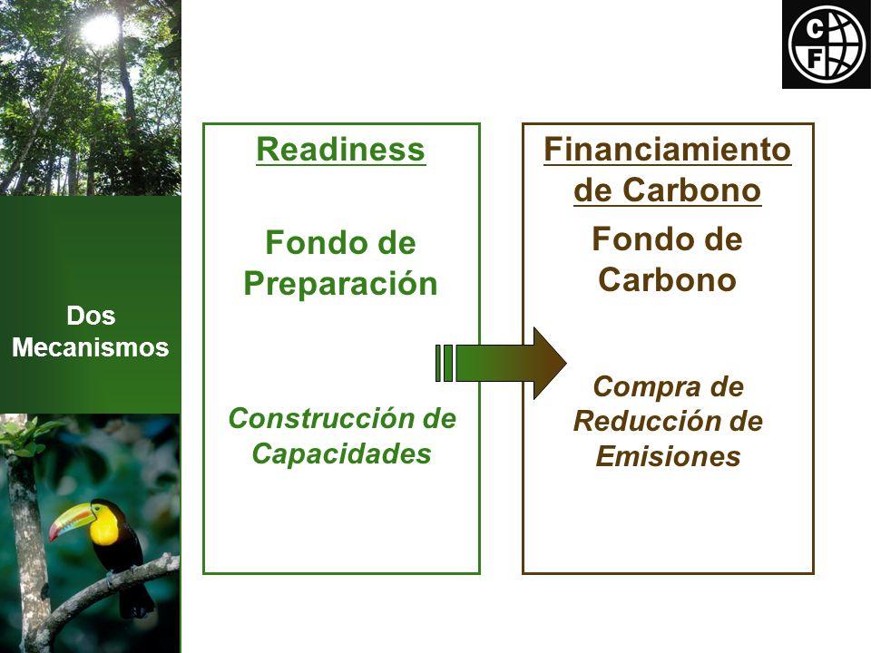 Mecanismo de Preparación Construir la capacidad de los países para acceder a un futuro sistema de incentivos Componentes: Escenario de Referencia Evaluar emisiones históricas Proyectar futuras emisiones Estrategia de reducción de emisiones Sistema de Monitoreo Meta: $185 millones ~ 37 países Balance + competencia Envío de la R-PIN Readiness Plan Idea Note Seleción por el Comité de Participantes
