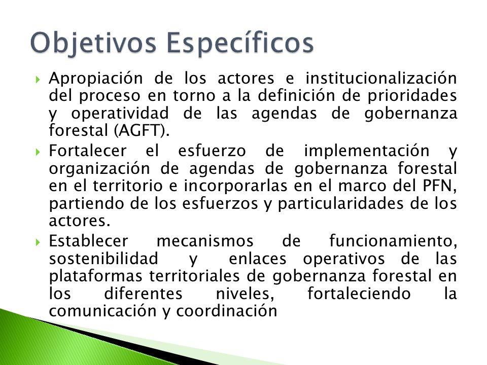 Apropiación de los actores e institucionalización del proceso en torno a la definición de prioridades y operatividad de las agendas de gobernanza forestal (AGFT).