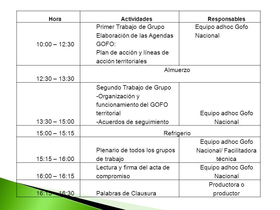 HoraActividadesResponsables 10:00 – 12:30 Primer Trabajo de Grupo Elaboración de las Agendas GOFO: Plan de acción y líneas de acción territoriales Equipo adhoc Gofo Nacional 12:30 – 13:30 Almuerzo 13:30 – 15:00 Segundo Trabajo de Grupo -Organización y funcionamiento del GOFO territorial -Acuerdos de seguimiento Equipo adhoc Gofo Nacional 15:00 – 15:15Refrigerio 15:15 – 16:00 Plenario de todos los grupos de trabajo Equipo adhoc Gofo Nacional/ Facilitadora técnica 16:00 – 16:15 Lectura y firma del acta de compromiso Equipo adhoc Gofo Nacional 16:15 – 16:30Palabras de Clausura Productora o productor