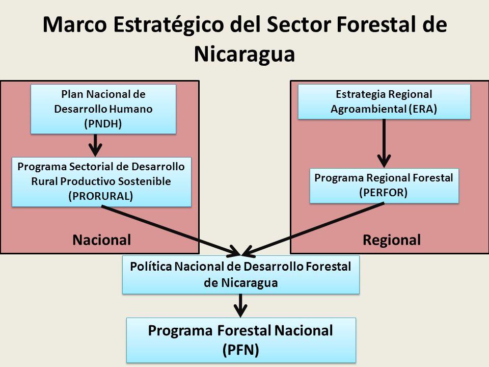 Nacional Regional Marco Estratégico del Sector Forestal de Nicaragua Estrategia Regional Agroambiental (ERA) Programa Regional Forestal (PERFOR) Programa Forestal Nacional (PFN) Política Nacional de Desarrollo Forestal de Nicaragua Plan Nacional de Desarrollo Humano (PNDH) Programa Sectorial de Desarrollo Rural Productivo Sostenible (PRORURAL)