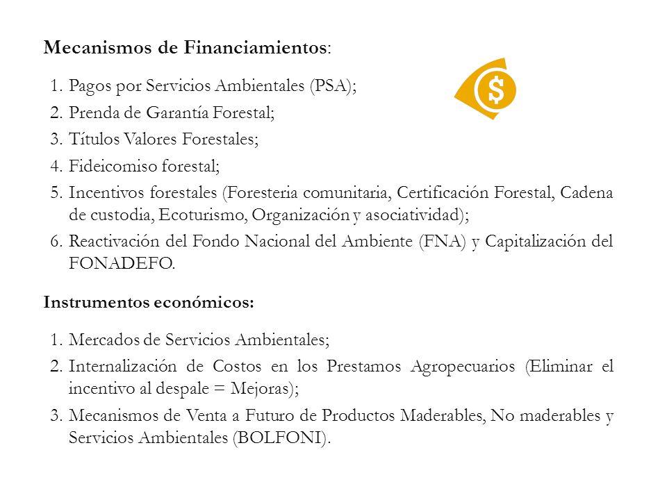 Mecanismos de Financiamientos: 1.Pagos por Servicios Ambientales (PSA); 2.Prenda de Garantía Forestal; 3.Títulos Valores Forestales; 4.Fideicomiso for