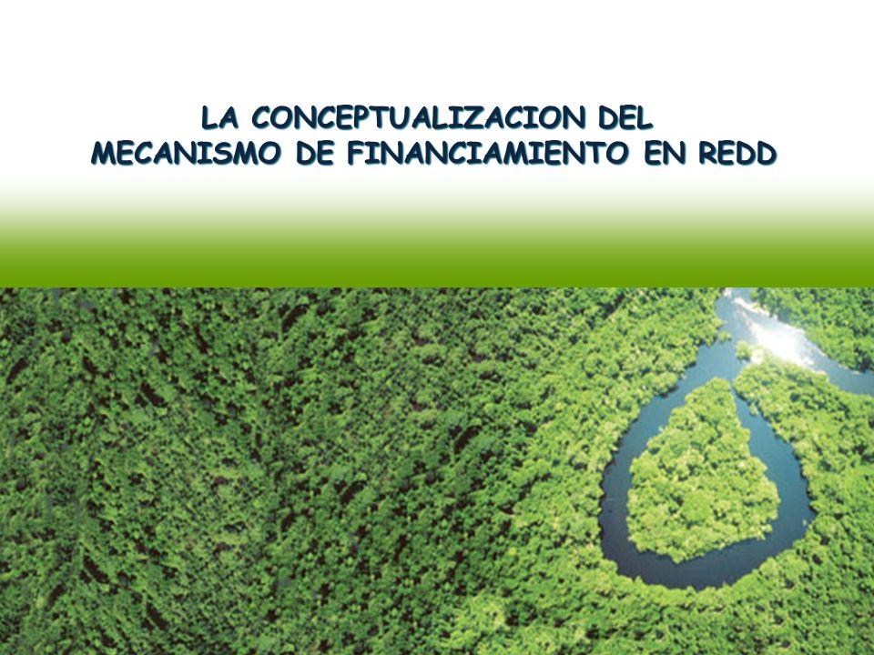 El concepto de REDD Comunidad Internacional Sector Privado Gobierno Mecanismos Financieros Justos, Accesibles Eficientes Sostenibles Enfoque desarrollo de capacidades