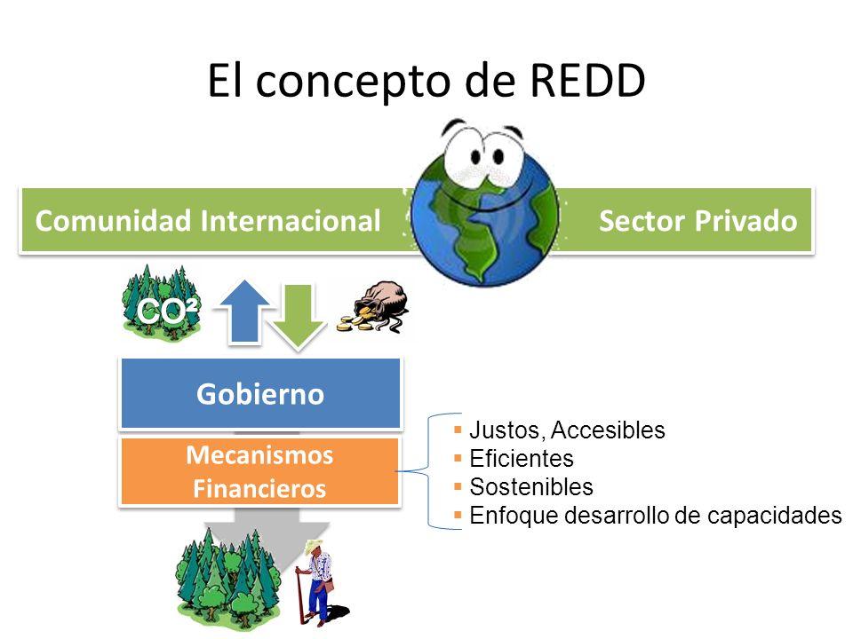 El concepto de REDD Comunidad Internacional Sector Privado Gobierno Mecanismos Financieros Justos, Accesibles Eficientes Sostenibles Enfoque desarroll