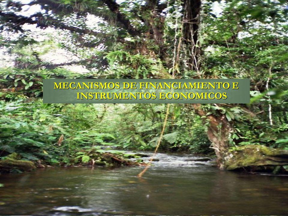Mecanismos de Financiamientos: 1.Pagos por Servicios Ambientales (PSA); 2.Prenda de Garantía Forestal; 3.Títulos Valores Forestales; 4.Fideicomiso forestal; 5.Incentivos forestales (Foresteria comunitaria, Certificación Forestal, Cadena de custodia, Ecoturismo, Organización y asociatividad); 6.Reactivación del Fondo Nacional del Ambiente (FNA) y Capitalización del FONADEFO.