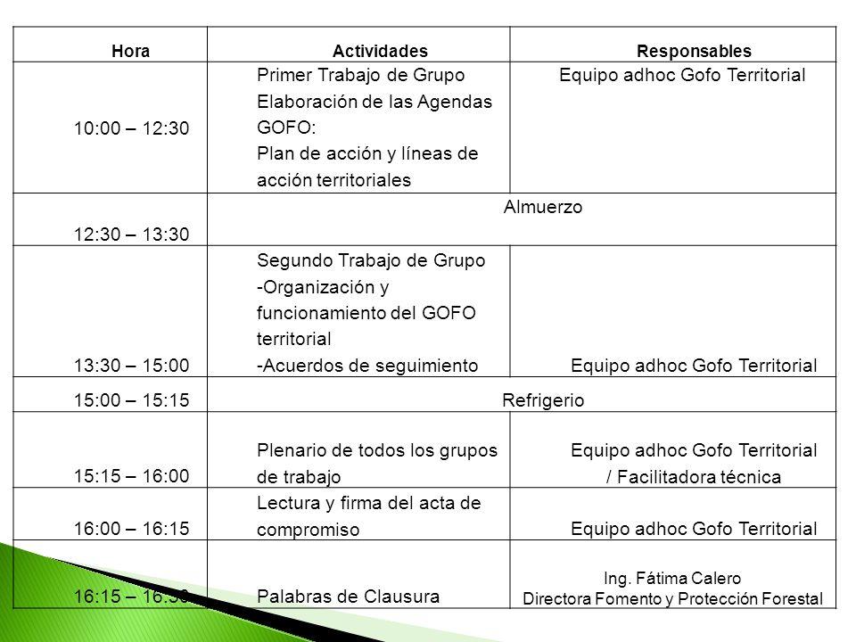 HoraActividadesResponsables 10:00 – 12:30 Primer Trabajo de Grupo Elaboración de las Agendas GOFO: Plan de acción y líneas de acción territoriales Equ