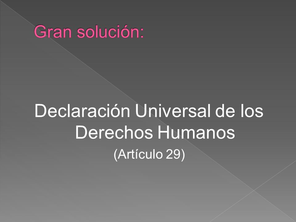 Declaración Universal de los Derechos Humanos (Artículo 29)