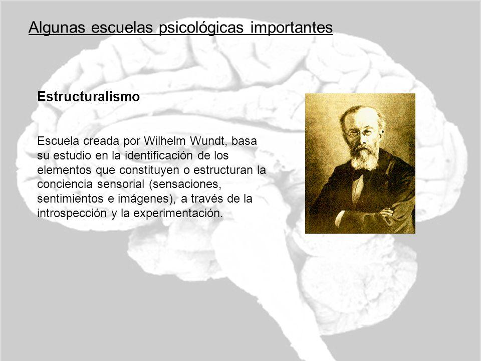 Algunas escuelas psicológicas importantes Estructuralismo Escuela creada por Wilhelm Wundt, basa su estudio en la identificación de los elementos que