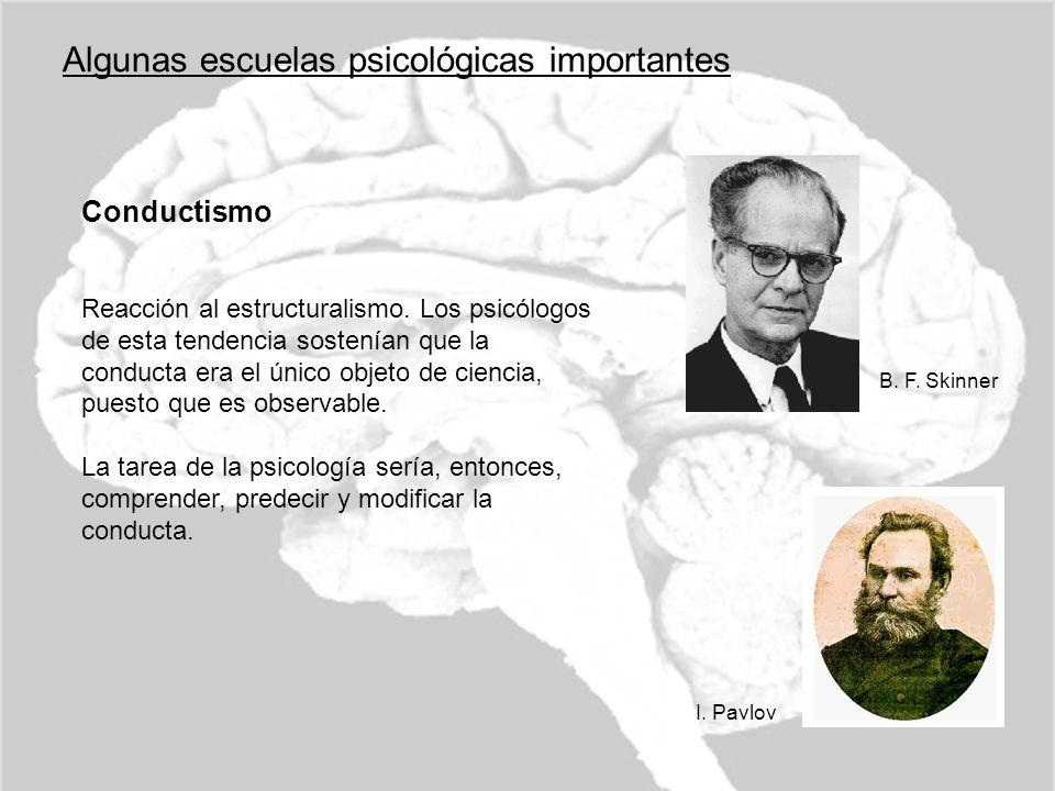 Algunas escuelas psicológicas importantes Conductismo Reacción al estructuralismo. Los psicólogos de esta tendencia sostenían que la conducta era el ú