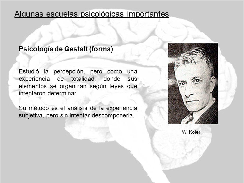 Algunas escuelas psicológicas importantes Psicología de Gestalt (forma) Estudió la percepción, pero como una experiencia de totalidad, donde sus eleme