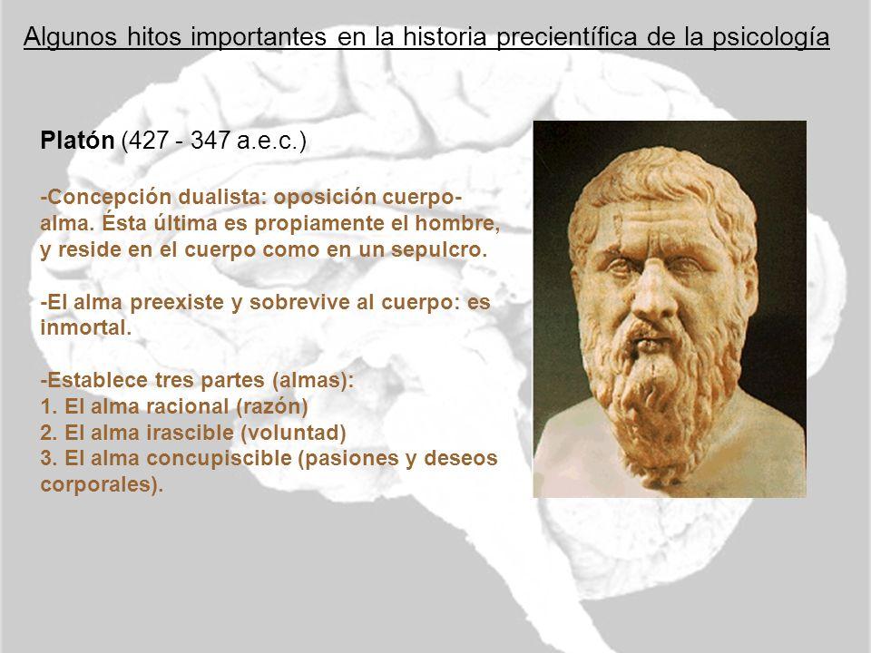 Algunos hitos importantes en la historia precientífica de la psicología Platón (427 - 347 a.e.c.) -Concepción dualista: oposición cuerpo- alma. Ésta ú