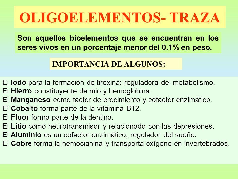 OLIGOELEMENTOS- TRAZA Son aquellos bioelementos que se encuentran en los seres vivos en un porcentaje menor del 0.1% en peso. IMPORTANCIA DE ALGUNOS: