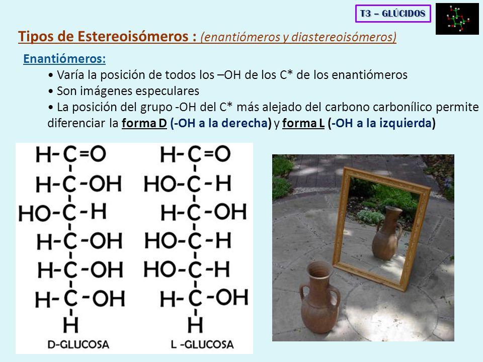 Enantiómeros: Varía la posición de todos los –OH de los C* de los enantiómeros Son imágenes especulares La posición del grupo -OH del C* más alejado d