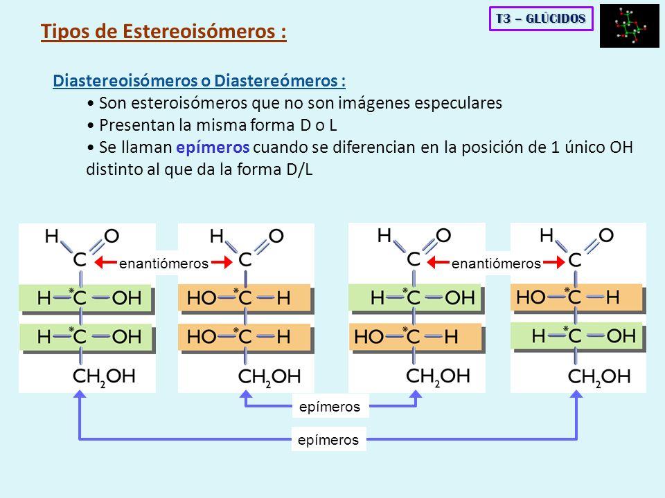 Diastereoisómeros o Diastereómeros : Son esteroisómeros que no son imágenes especulares Presentan la misma forma D o L Se llaman epímeros cuando se di