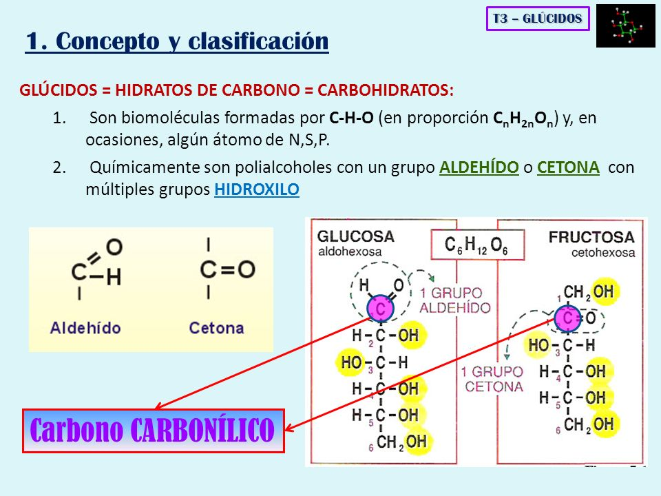 1. Concepto y clasificación GLÚCIDOS = HIDRATOS DE CARBONO = CARBOHIDRATOS: 1. Son biomoléculas formadas por C-H-O (en proporción C n H 2n O n ) y, en