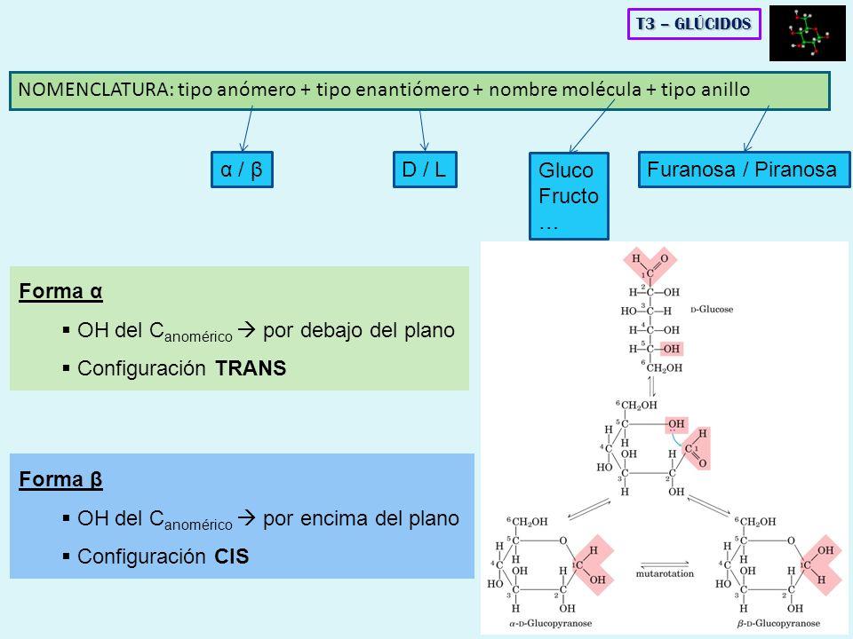 NOMENCLATURA: tipo anómero + tipo enantiómero + nombre molécula + tipo anillo T3 – GLÚCIDOS Forma α OH del C anomérico por debajo del plano Configurac