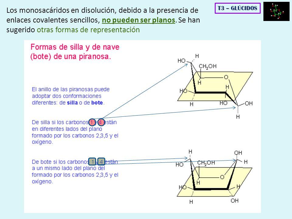 Los monosacáridos en disolución, debido a la presencia de enlaces covalentes sencillos, no pueden ser planos. Se han sugerido otras formas de represen