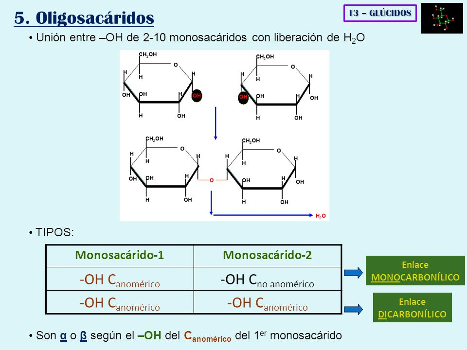 Unión entre –OH de 2-10 monosacáridos con liberación de H 2 O TIPOS: Monosacárido-1Monosacárido-2 -OH C anomérico -OH C no anomérico -OH C anomérico E