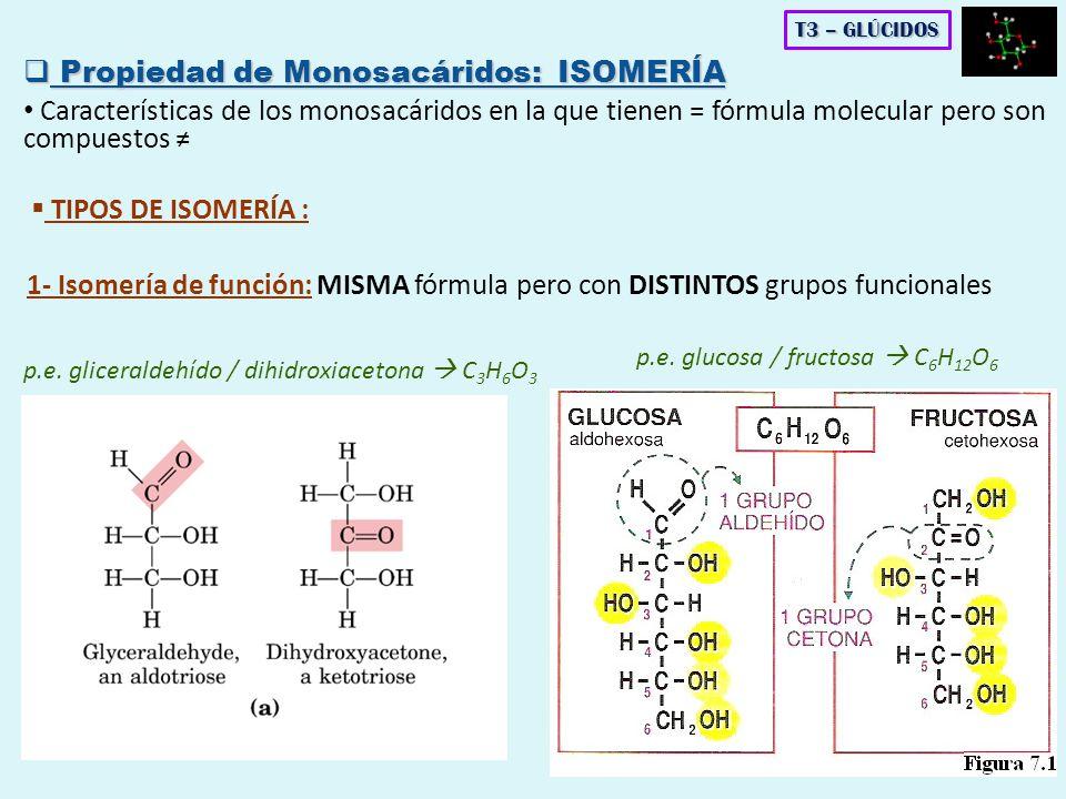 FOSFATOS DE AZÚCARES -D -glucosa -6 P -D -fructosa -6 P T3 – GLÚCIDOS 4.
