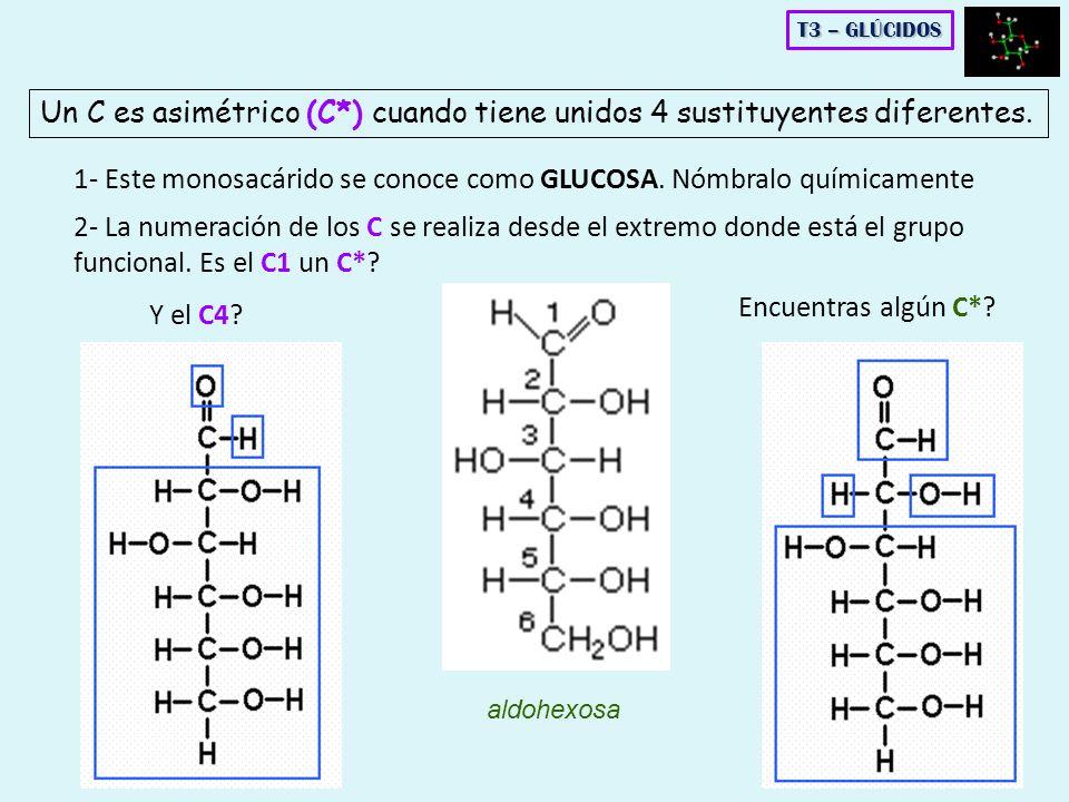Un C es asimétrico (C*) cuando tiene unidos 4 sustituyentes diferentes. 1- Este monosacárido se conoce como GLUCOSA. Nómbralo químicamente 2- La numer