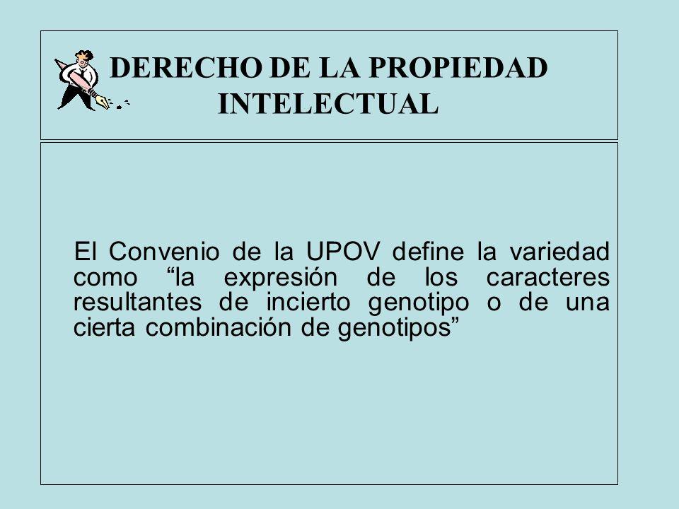 DERECHO DE LA PROPIEDAD INTELECTUAL El Convenio de la UPOV define la variedad como la expresión de los caracteres resultantes de incierto genotipo o d