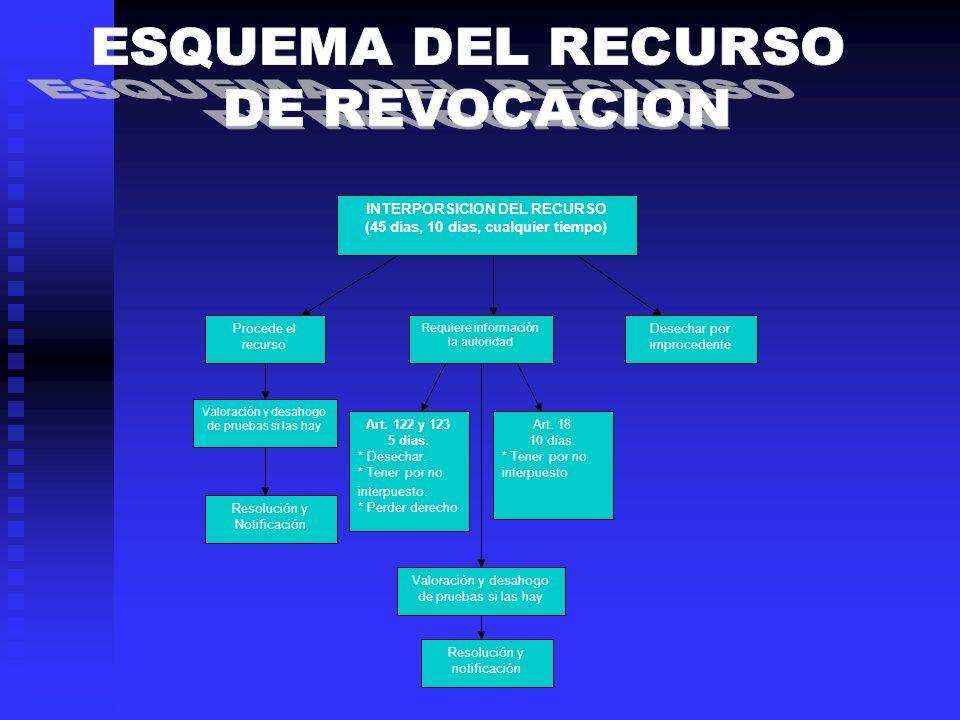 INTERPORSICION DEL RECURSO (45 días, 10 días, cualquier tiempo) Procede el recurso Requiere información la autoridad Desechar por improcedente Valorac