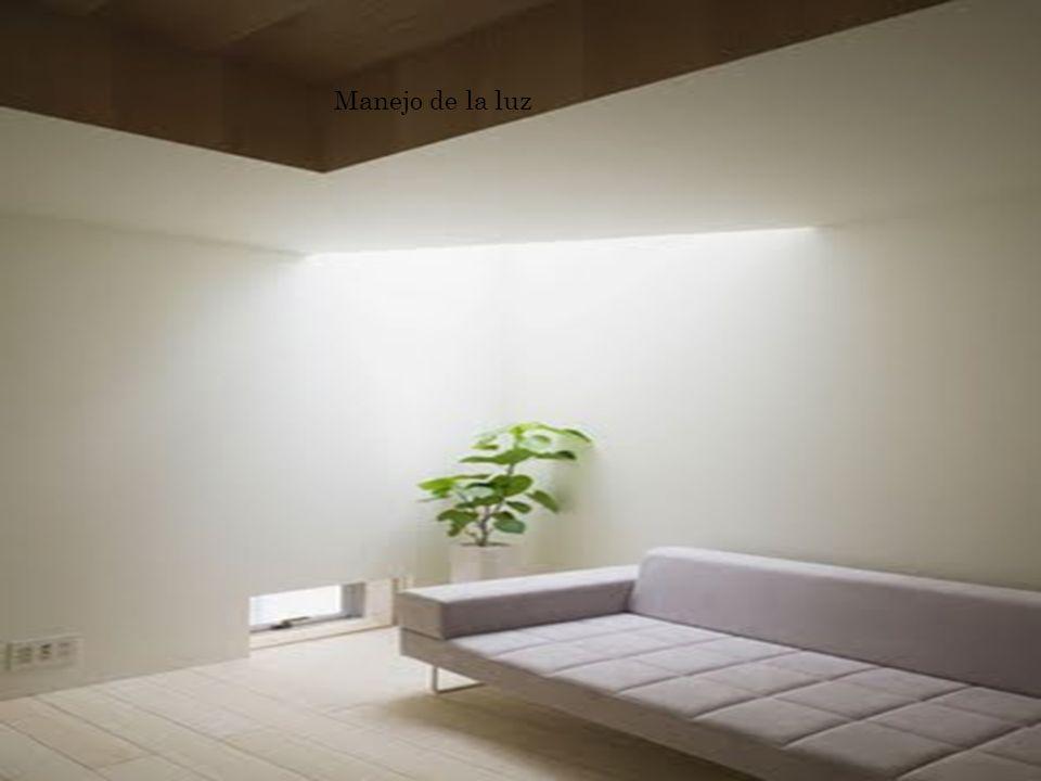 La luz es un factor clave que nos permitirá sacar fotos nítidas, o artísticas, por ejemplo, si queremos lograr algún efecto específico.