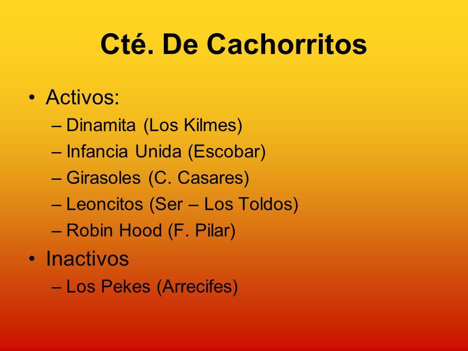 Cté. De Cachorritos Activos: –Dinamita (Los Kilmes) –Infancia Unida (Escobar) –Girasoles (C.