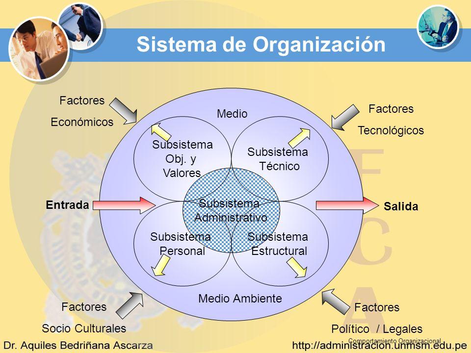 Entrada Salida Factores Económicos Factores Tecnológicos Factores Político / Legales Factores Socio Culturales Medio Ambiente Medio Subsistema Adminis