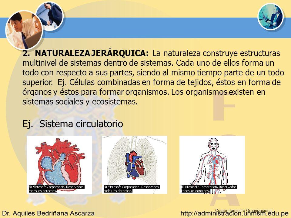 Comportamiento Organizacional 2. NATURALEZA JERÁRQUICA: La naturaleza construye estructuras multinivel de sistemas dentro de sistemas. Cada uno de ell