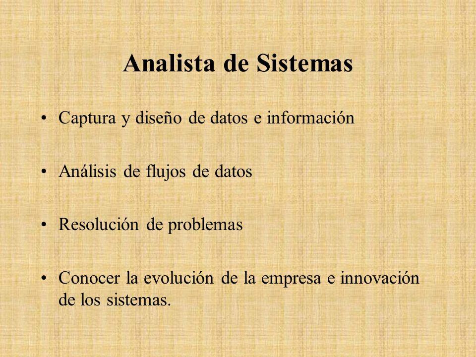 Analista de Sistemas Captura y diseño de datos e información Análisis de flujos de datos Resolución de problemas Conocer la evolución de la empresa e