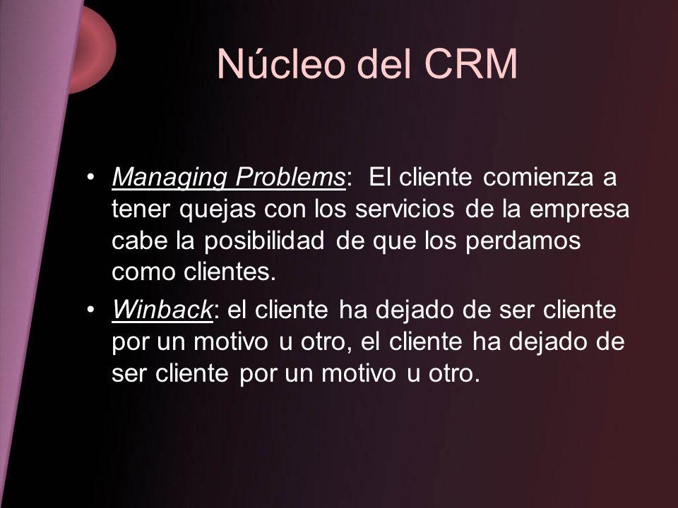 Núcleo del CRM Managing Problems: El cliente comienza a tener quejas con los servicios de la empresa cabe la posibilidad de que los perdamos como clie