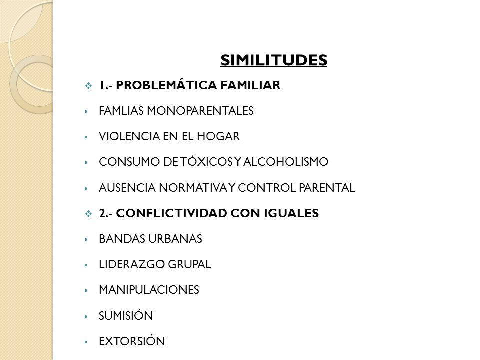 SIMILITUDES 1.- PROBLEMÁTICA FAMILIAR FAMLIAS MONOPARENTALES VIOLENCIA EN EL HOGAR CONSUMO DE TÓXICOS Y ALCOHOLISMO AUSENCIA NORMATIVA Y CONTROL PAREN