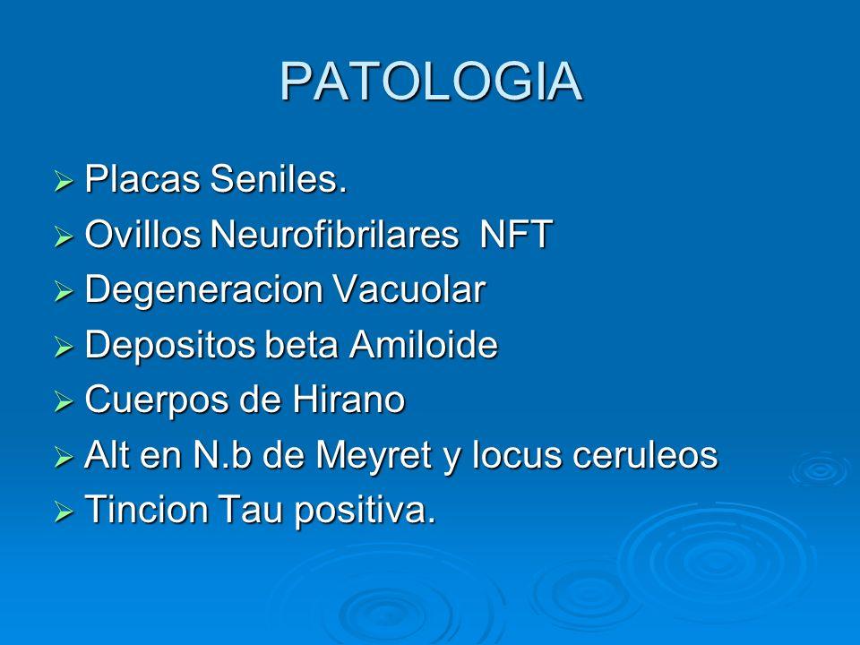 PATOLOGIA Placas Seniles. Placas Seniles. Ovillos Neurofibrilares NFT Ovillos Neurofibrilares NFT Degeneracion Vacuolar Degeneracion Vacuolar Deposito