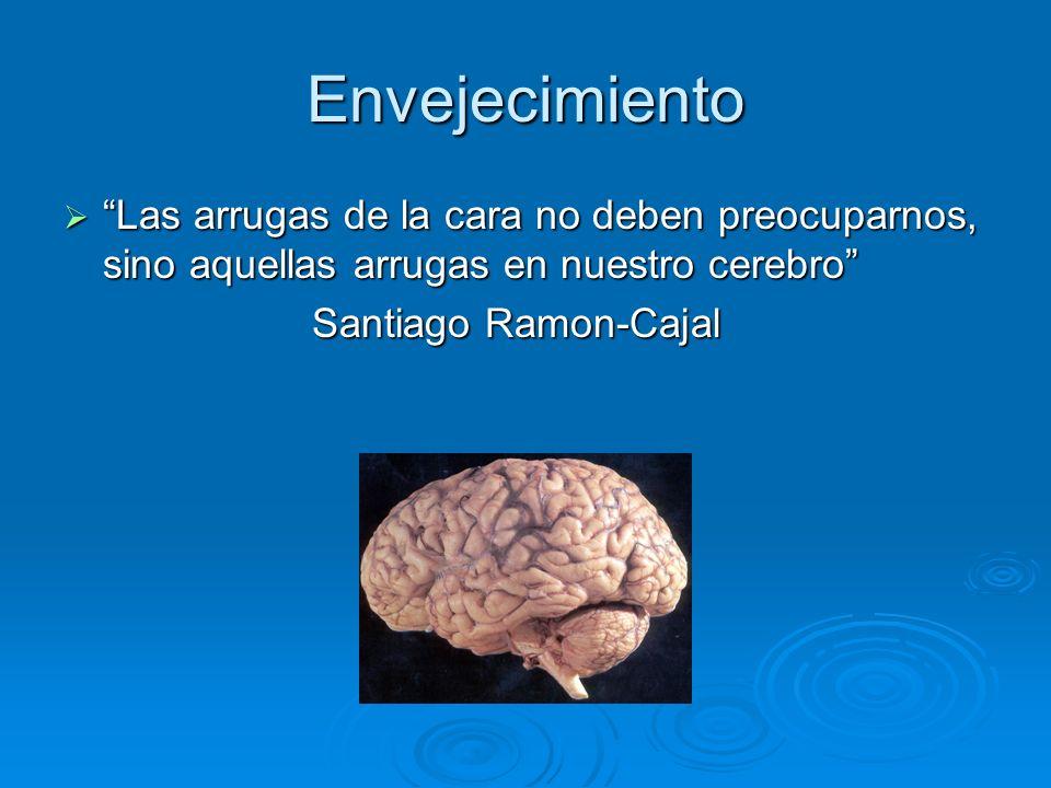 Demencia Cortical Funciones neocortex asociativo: Funciones neocortex asociativo: Sensorial: Sensorial: Inatencion, agnosias y alucinaciones Inatencion, agnosias y alucinaciones Org.