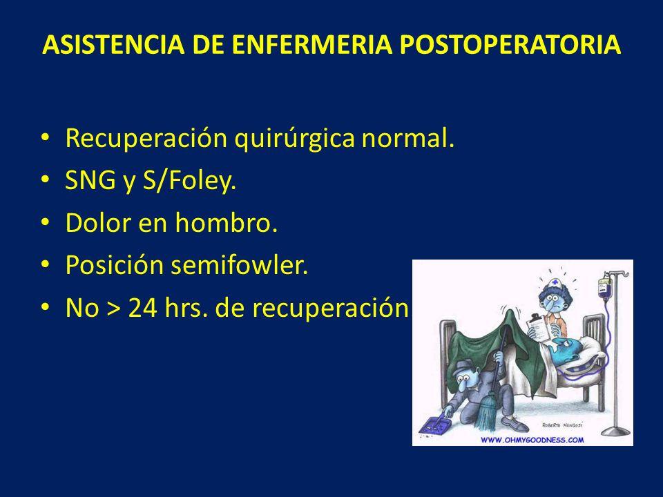 ASISTENCIA DE ENFERMERIA POSTOPERATORIA Recuperación quirúrgica normal. SNG y S/Foley. Dolor en hombro. Posición semifowler. No > 24 hrs. de recuperac