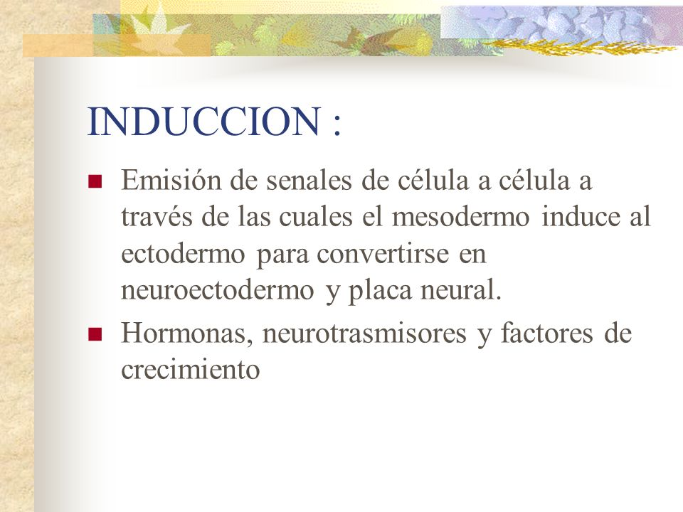 INDUCCION : Emisión de senales de célula a célula a través de las cuales el mesodermo induce al ectodermo para convertirse en neuroectodermo y placa n