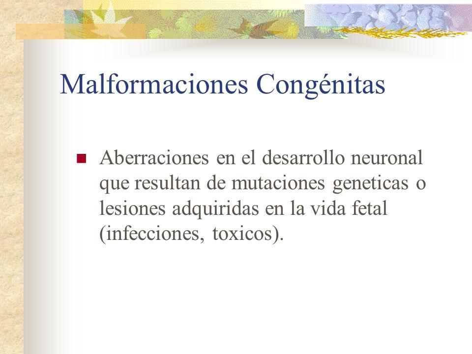 Malformaciones Congénitas Aberraciones en el desarrollo neuronal que resultan de mutaciones geneticas o lesiones adquiridas en la vida fetal (infeccio
