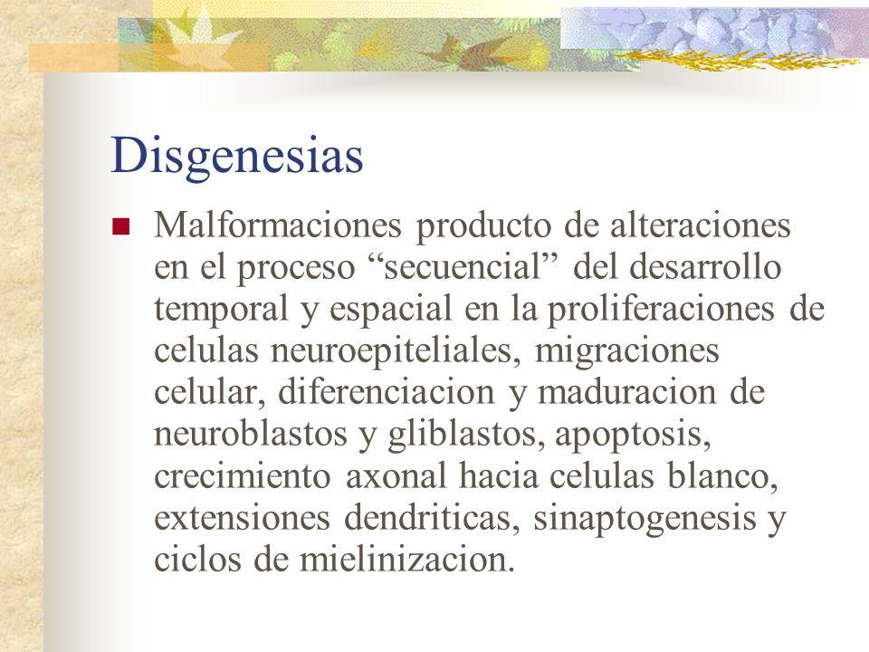 Disgenesias Malformaciones producto de alteraciones en el proceso secuencial del desarrollo temporal y espacial en la proliferaciones de celulas neuro