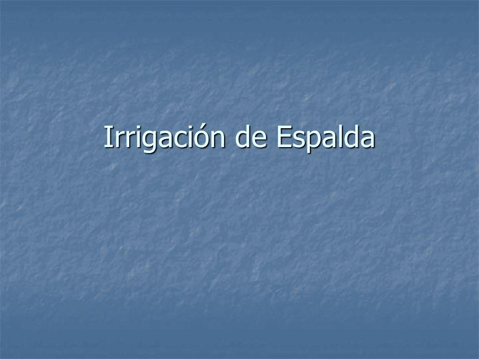 Irrigación de Espalda