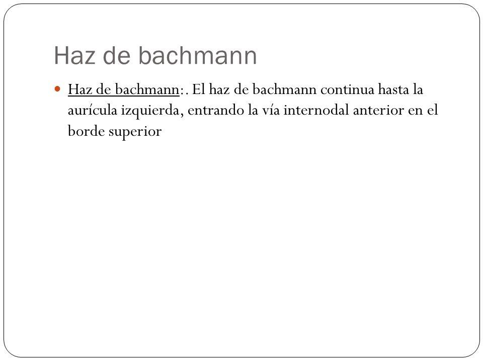 Haz de bachmann Haz de bachmann:. El haz de bachmann continua hasta la aurícula izquierda, entrando la vía internodal anterior en el borde superior