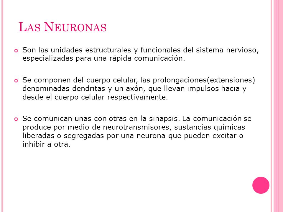 L AS N EURONAS Son las unidades estructurales y funcionales del sistema nervioso, especializadas para una rápida comunicación. Se componen del cuerpo